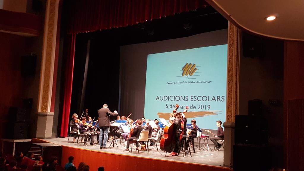 Audicio instruments orquestra 1r (13)