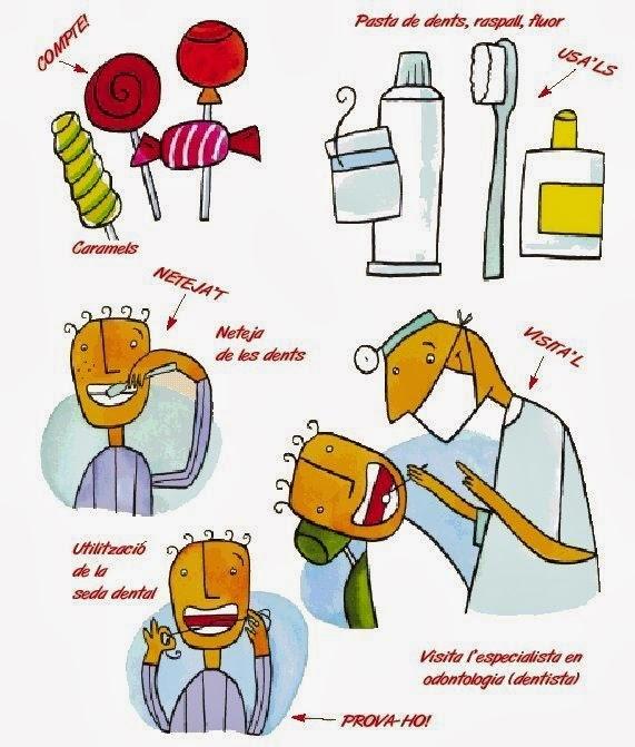 Habits Saludables Zer Requesens