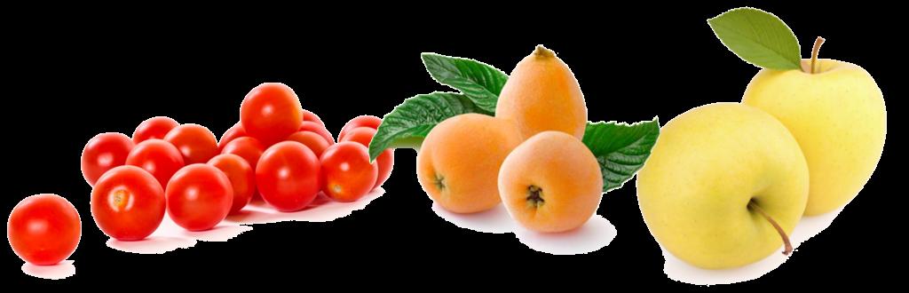 Fruites maig